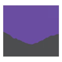 Formula Federgabel Service